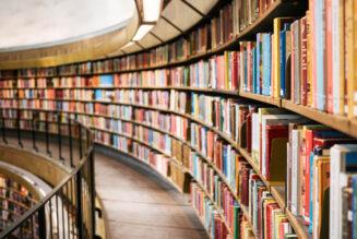 Bibliotecario (CP22)