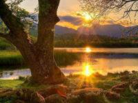 Operatore del Turismo Naturalistico: Requisiti di conoscenza, abilità e competenza
