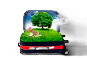 SPE5: Il Turismo Sostenibile (30 CF)